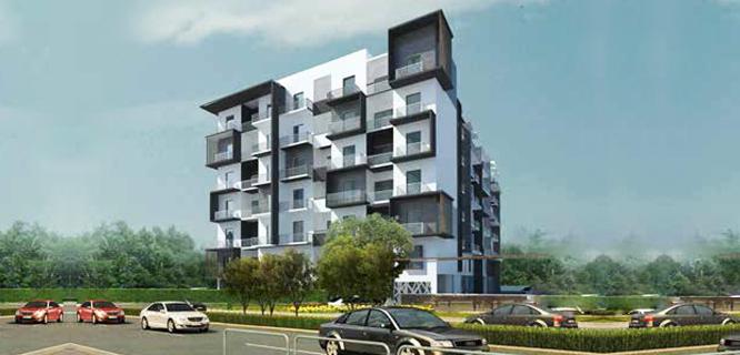 Damden Vivo in Bangalore